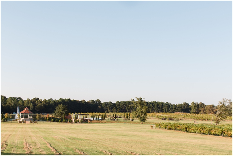 Gin_Creek_Winery_Hartsfield_Wedding_Photographer_photo_Anna_K_Photography_033